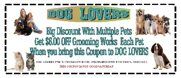 Dog Lovers Central Dog Grooming In Los Angeleslos Angeles Pet